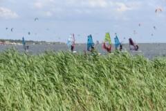 3 1 240x160 - Kursy Windsurfing Chałupy